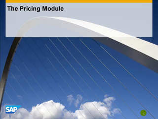 2.2 The Pricing Module